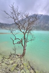 kawah putih (Venerdi Pictures) Tags: pictures white lake color green sports nature landscape top wide jakarta crater bandung sulfur potrait jawa hijau putih barat kawahputih 10mm venerdi widelens kawah ciwideuy belerang patuha