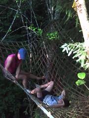 Cargo net in the trees