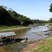 Rio Ariaú