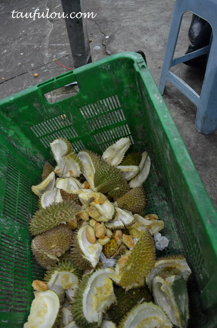 durian part 2 (23)