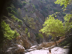 Point K (egotoagrimi) Tags: ikaria canyon    agrimi peopleinlandscape