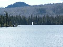 Sailboat on Olallie Lake (katheworsley) Tags: kayaking mtjefferson wildflowers cascademountainrange olallielake cabincamping