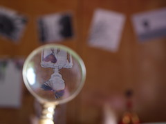 (rei4ai) Tags: paper skeleton heart magnifyingglass bow rei4ai