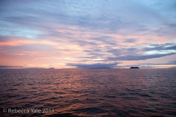 RYALE_Galapagos-290