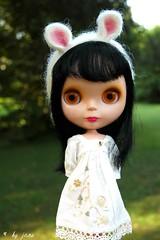 204/365: white bunny