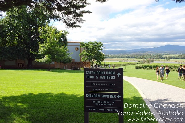 domaine chandon yarra valley australia (03)
