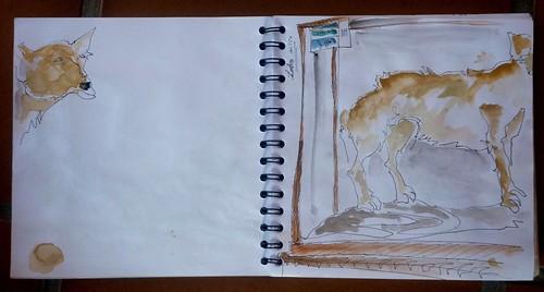 dibujando en el museo 32sktcrawl