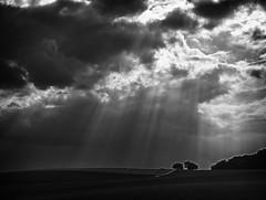 relieving sunbeams (olipennell) Tags: cloud sun field germany felder wolke sonne acker badenwürttemberg obereisesheim