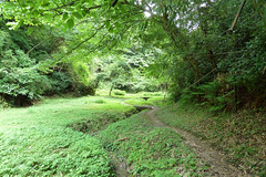 瀬上市民の森(漆窪休憩所付近)(Segami Community Woods)