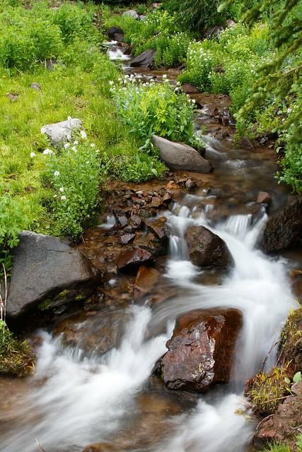 Griffith Creek-6.JPG