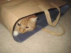 he loves paper bags