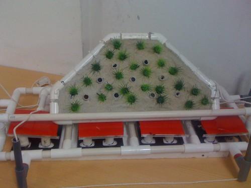 Seacil model