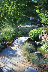 Foliage 45 (thegardenbuzz) Tags: bridge shadows path lantern slate milkweed sedum pavers astilbe swale festuca
