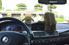 89F 94% humidity (kathleen walsh) Tags: hot silly toy nc cool stuffed alpina august plush scream domo wilmington carrabbas carsandcoffee evilmini