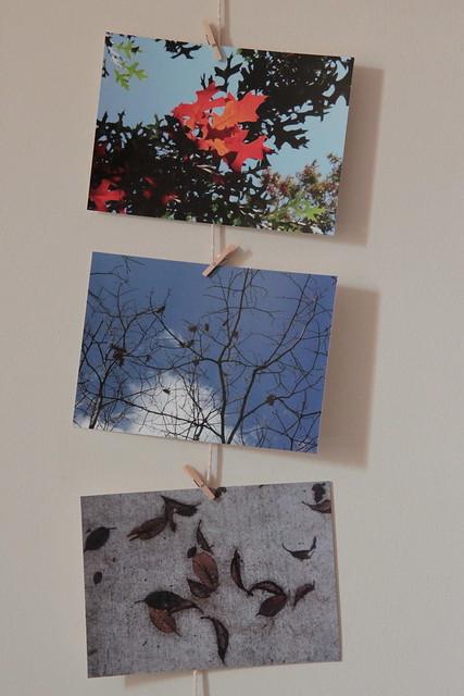 autumn postcards are back