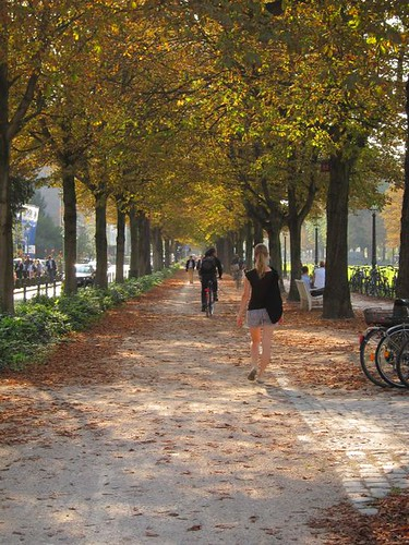 walking in park bonn germany by Danalynn C