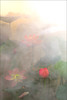 Explored!  Lotus Flower - IMG_1303 (Bahman Farzad) Tags: flower macro yoga fog peace lotus relaxing peaceful meditation therapy lotusflower lotuspetal lotuspetals lotusflowerpetals lotusflowerpetal