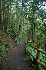 Deception Pass Trail