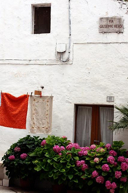 Locorotondo, Puglia (Summer 2011)