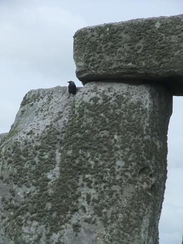 stonehenge 041