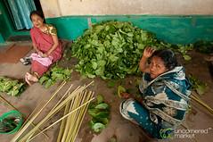 Stacking Betel Leaves in Khashia Village - Srimongal, Bangladesh (uncorneredmarket) Tags: people women bangladesh indigenous betel srimongal betelleaf betelleaves khashia khashiavillage