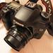 MC Helios 44-M 58mm/f2 on Canon 40D