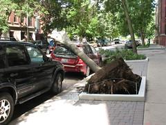 Not my car, thank goodness!