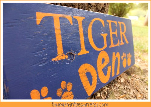 tiger - auburn