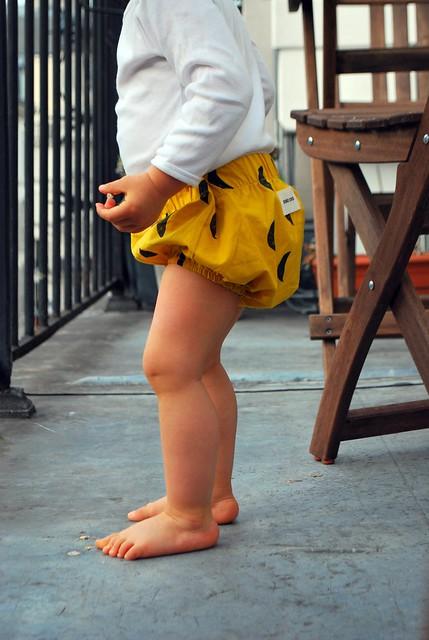 chubby legs