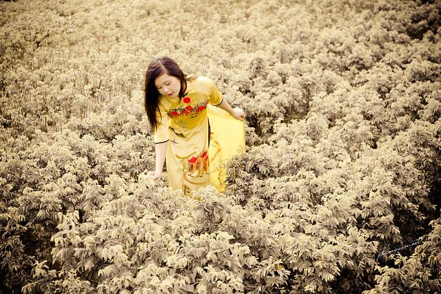 Trang Sunshine - Đón nắng