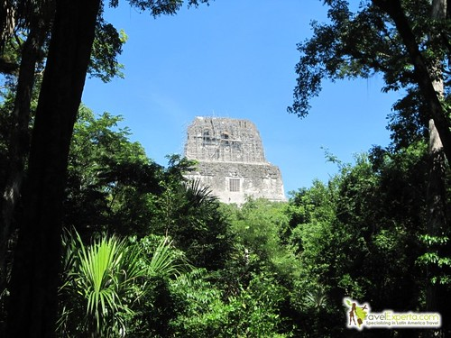 Temples In The Rainforest Tikal Mayan Ruins