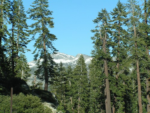 En Route to Yosemite