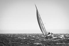 Approches de Dahout (windvins) Tags: sea blackandwhite mer white black sailing noiretblanc bretagne bateau voile navigation finistere radedebrest pentaxart