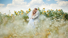 Wedding. Maxim and Diana ([]NEEL[]) Tags: wedding shiny ukraine sunflower kharkiv