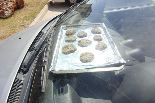 Vegan Car Cookies - After The Move