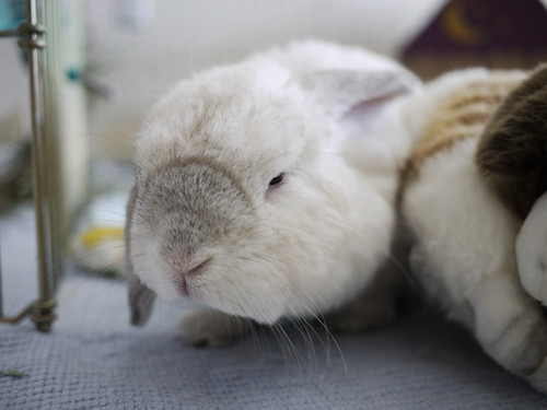 4, so what happened..?