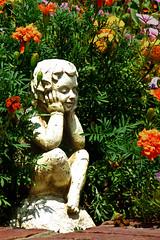 Aug062011_0903-Garden-Angel (©Delos Johnson) Tags: flowers canon garden sunflower topaz delos g9 detail4 denoise