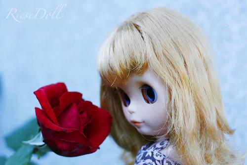 El olor de las rosas...