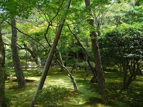 Kyoto-288.jpg