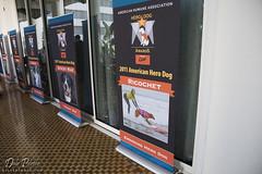 Hero Dog Awards 2011 - Ricochet sign