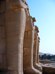 Ramesseum (IV) (isawnyu) Tags: sculpture history statue stone architecture temple ancient masonry egypt structure nile valley civilization luxor osiris egyptology mortuary ramesses ramesseum osirid pleiades:depicts=963047542