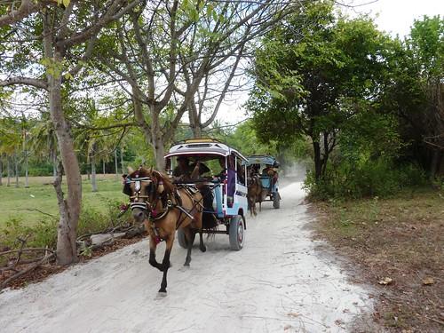Indo 11-Lombok-Gili Trawangan (40)