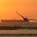 E...mais um pôr-do-sol no Pacífico.