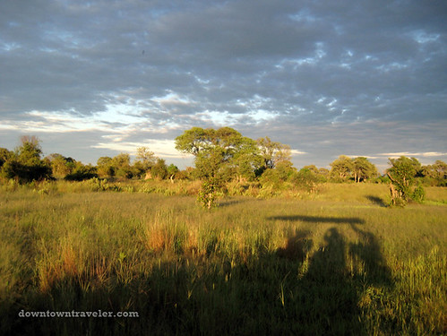 Jeep safari at dusk in Botswana