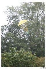 Foguete a gua (jmscarpa) Tags: water gua rocket foguete
