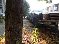 big old car (Zombie37) Tags: auto street old city light shadow urban sunlight plant black tree green nature leaves car metal vintage boat big weed pov background side low gray perspective ground baltimore grill diagonal pointofview sidewalk american bark half trunk americana headlight grille hampden foreground grounded rectangles landyacht hulking 34thst