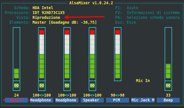 Figura 3 - AlsaMixer, mixer audio di Ubuntu; vista Riproduzione.