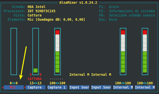 Figura 4 - AlsaMixer, mixer audio di Ubuntu; vista Cattura.