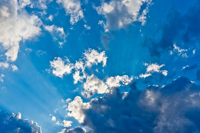 192/365 - July 11, 2011 - Light Rays
