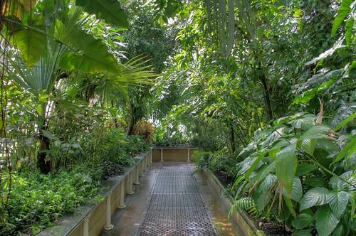 Kew Garden's Greenhouses